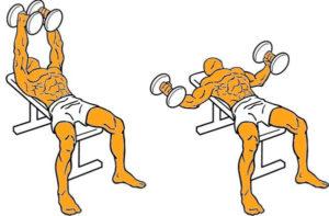 Los-tres-ejercicios-principales